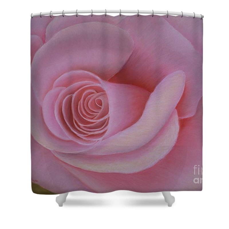 Rose Shower Curtain featuring the painting Pink Blush by Mary Erbert