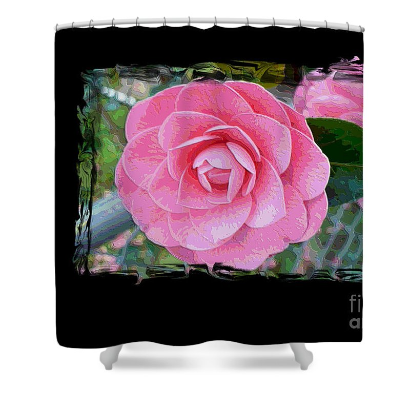 Pink Camelllias Shower Curtain featuring the photograph Pink Camellias With Fence And Framing by Carol Groenen