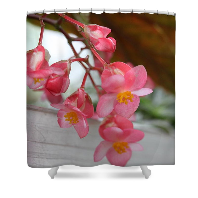 Shower Curtain featuring the photograph Begonia by Cierra Brady