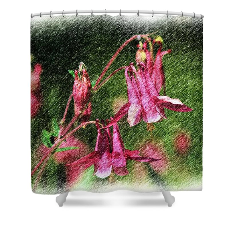 Flower Shower Curtain featuring the digital art Pink Columbines by Smilin Eyes Treasures