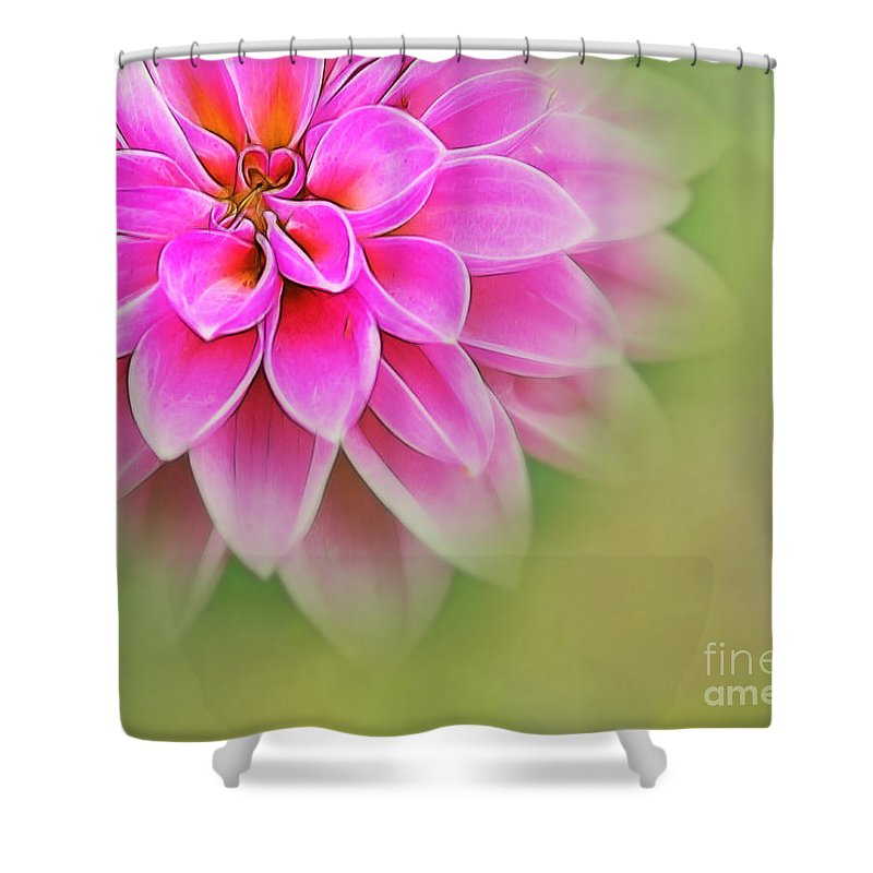 Dahlia Shower Curtain featuring the photograph Pink Dahlia by Judi Bagwell