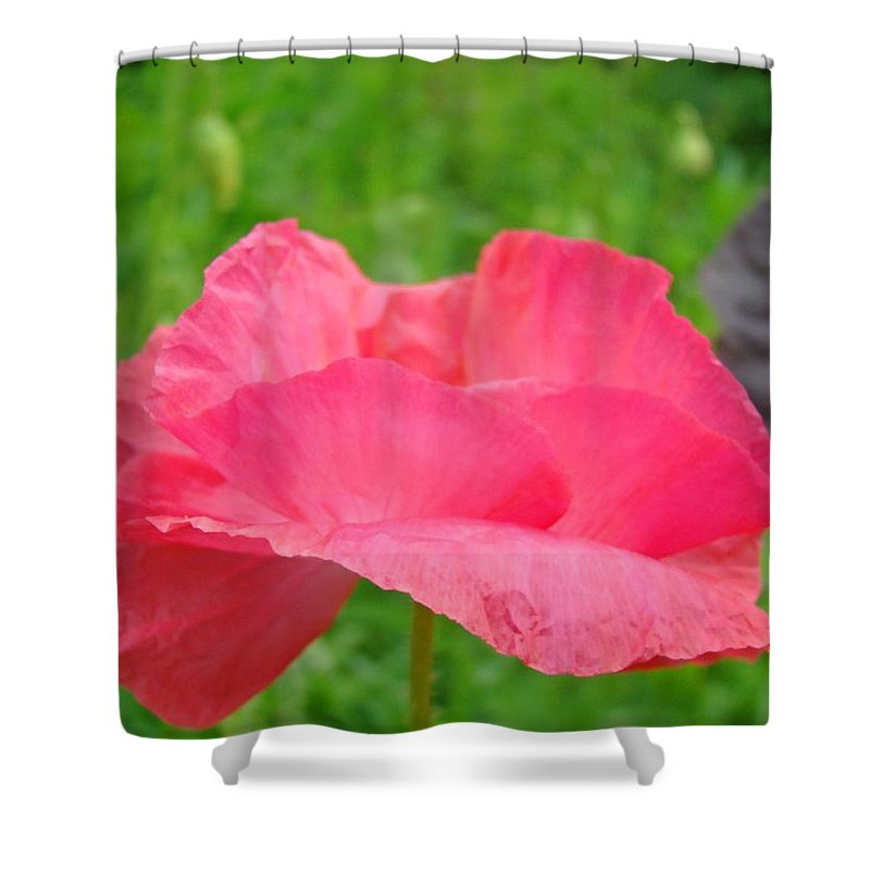 Poppy Shower Curtain featuring the photograph Pink Floral Flower Art Print Green Meadow Baslee Troutman by Baslee Troutman