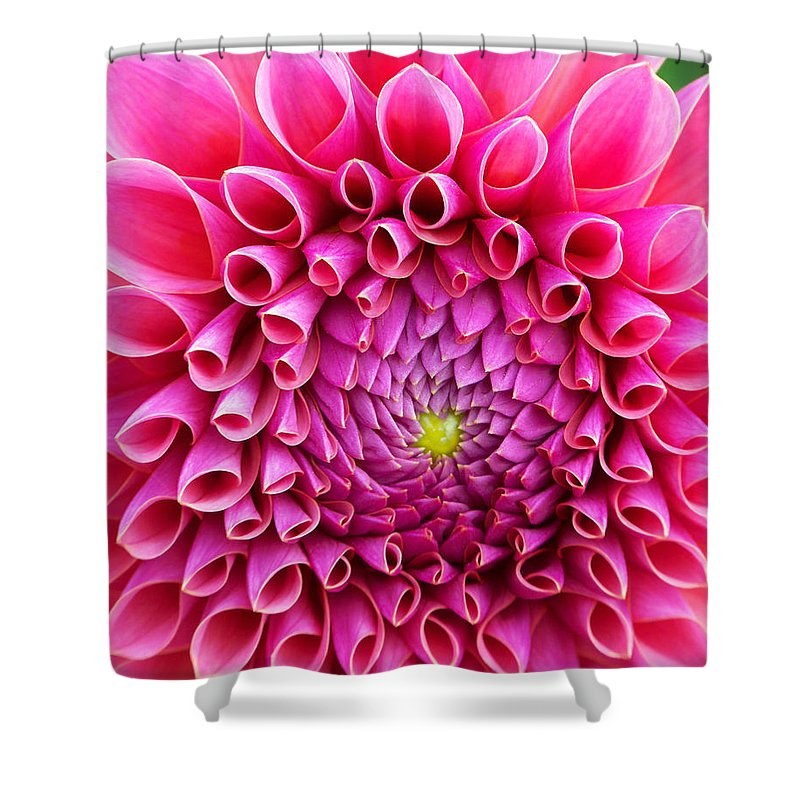 Flower Shower Curtain featuring the photograph Pink Flower Close Up by Anthony Jones