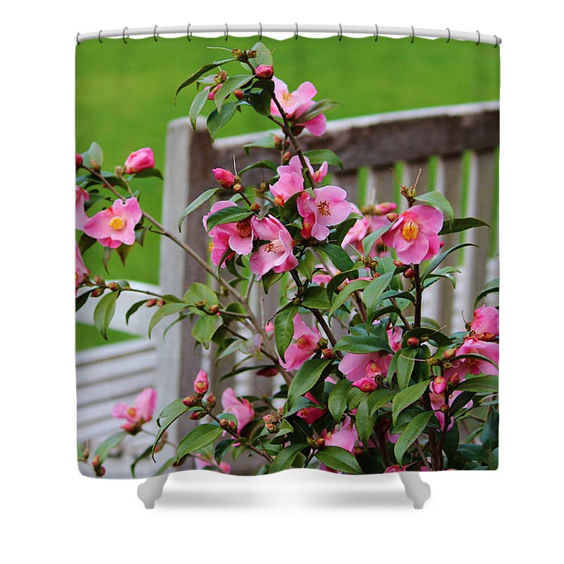 Bench Shower Curtain featuring the photograph Pink Flowers By The Bench by Cynthia Guinn