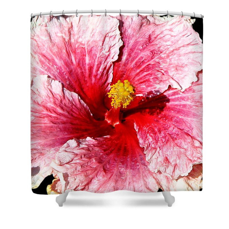 Flower Shower Curtain featuring the photograph Pink Hibiscus Inspired By Georgia O'keefe by Anthony Jones