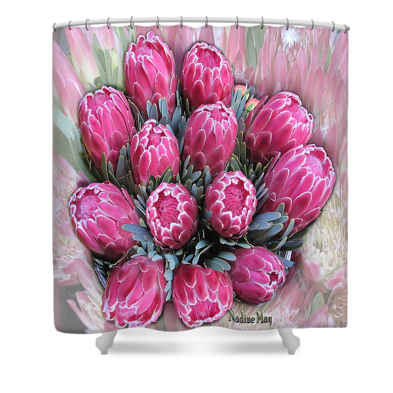 Protea Shower Curtain featuring the painting Pink Ice by Nadine May