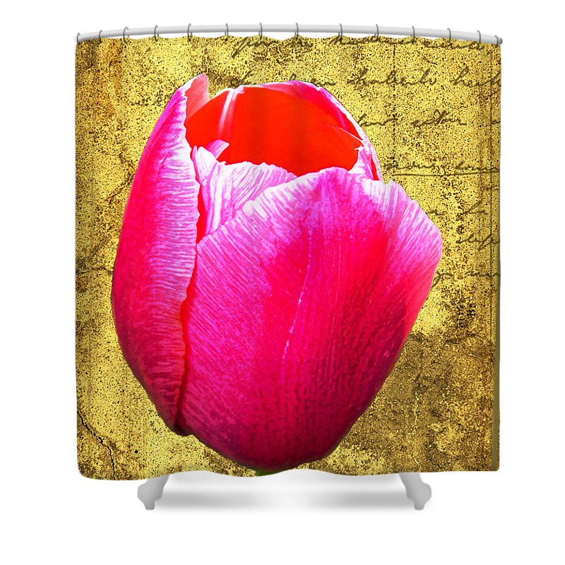 Pink Shower Curtain featuring the digital art Pink Impression Tulip by Teresa Mucha