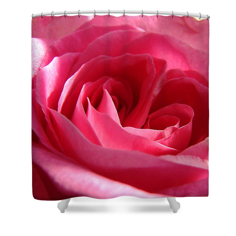 Shower Curtain featuring the photograph Pink by Luciana Seymour