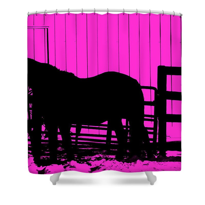 Pink Pony Shower Curtain featuring the photograph Pink Pony by Edward Smith