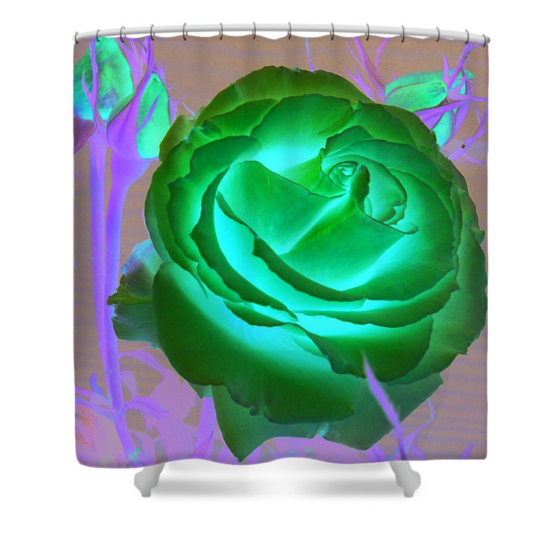 Rose Shower Curtain featuring the photograph Pink Rose by Mary Gaines