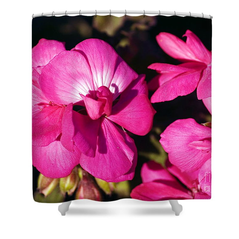 Clay Shower Curtain featuring the photograph Pink Spring Florals by Clayton Bruster