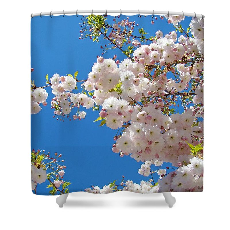 �blossoms Artwork� Shower Curtain featuring the photograph Pink Tree Blossoms Art Prints 55 Spring Flowers Blue Sky Landscape by Baslee Troutman