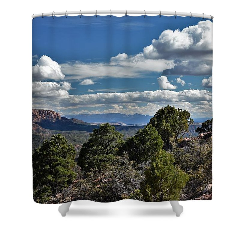 Kolob Canyon Shower Curtain featuring the photograph Pinon Forest At The Top Of Kolob Canyon by Heidi Fickinger