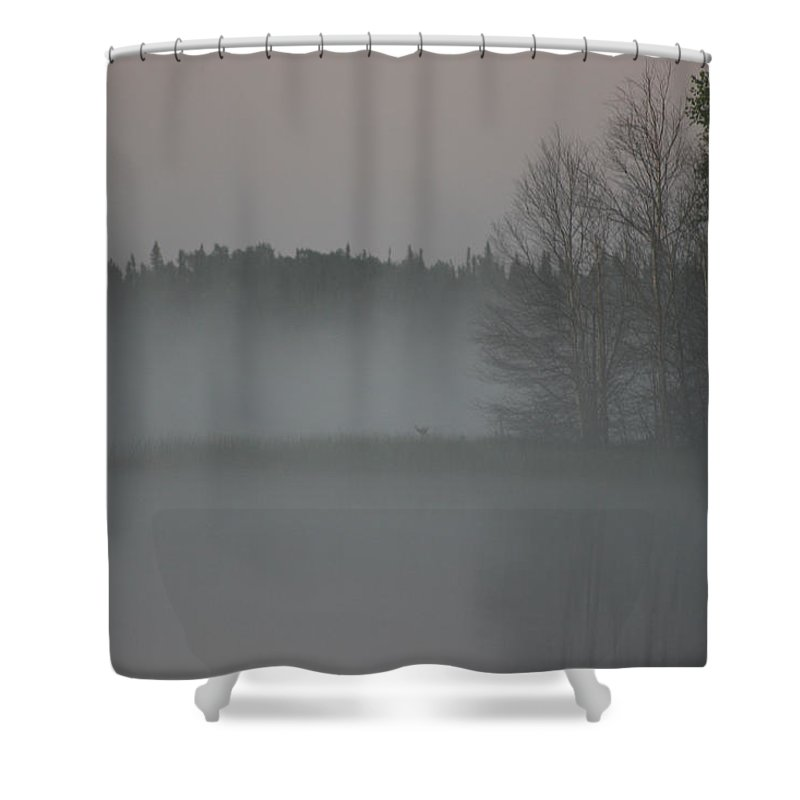 Lake Water Forest Camp Mist Trees Saskatchewan Shower Curtain featuring the photograph Piprell Lake 4 Am Mist by Andrea Lawrence