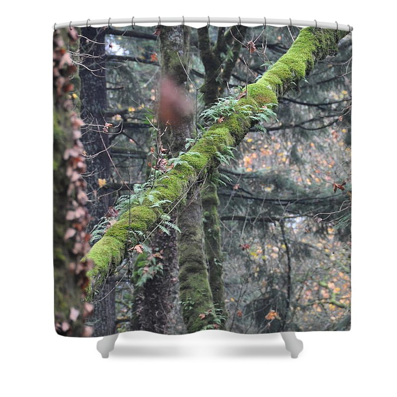 Oregon Shower Curtain featuring the photograph Pittock Pitch by Rich Bodane