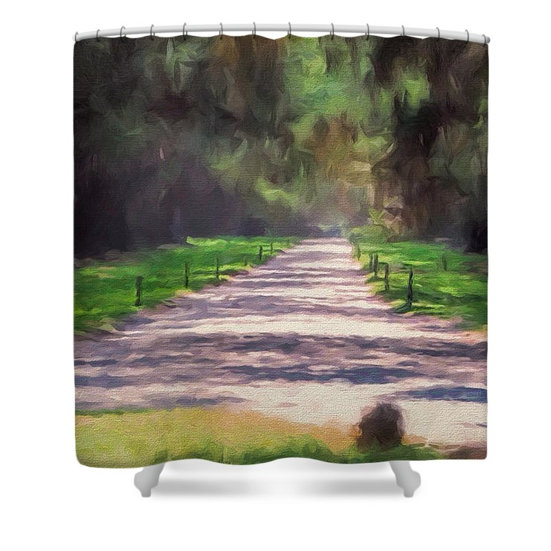 Plantation Shower Curtain featuring the photograph Plantation Road South Carolina by Gary Nelson