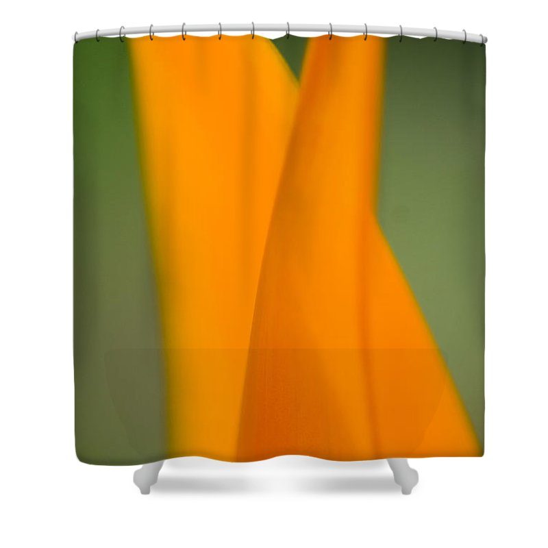 83-csm0049 Shower Curtain featuring the photograph Plant Abstract II by Ray Laskowitz - Printscapes