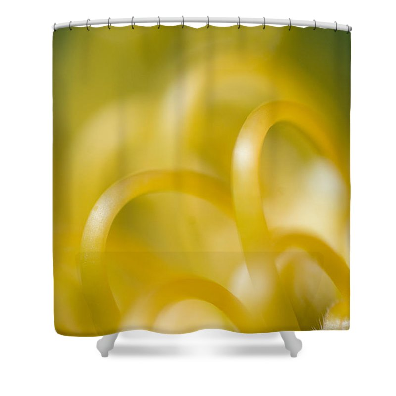 83-pfs0193 Shower Curtain featuring the photograph Plant Abstract by Ray Laskowitz - Printscapes