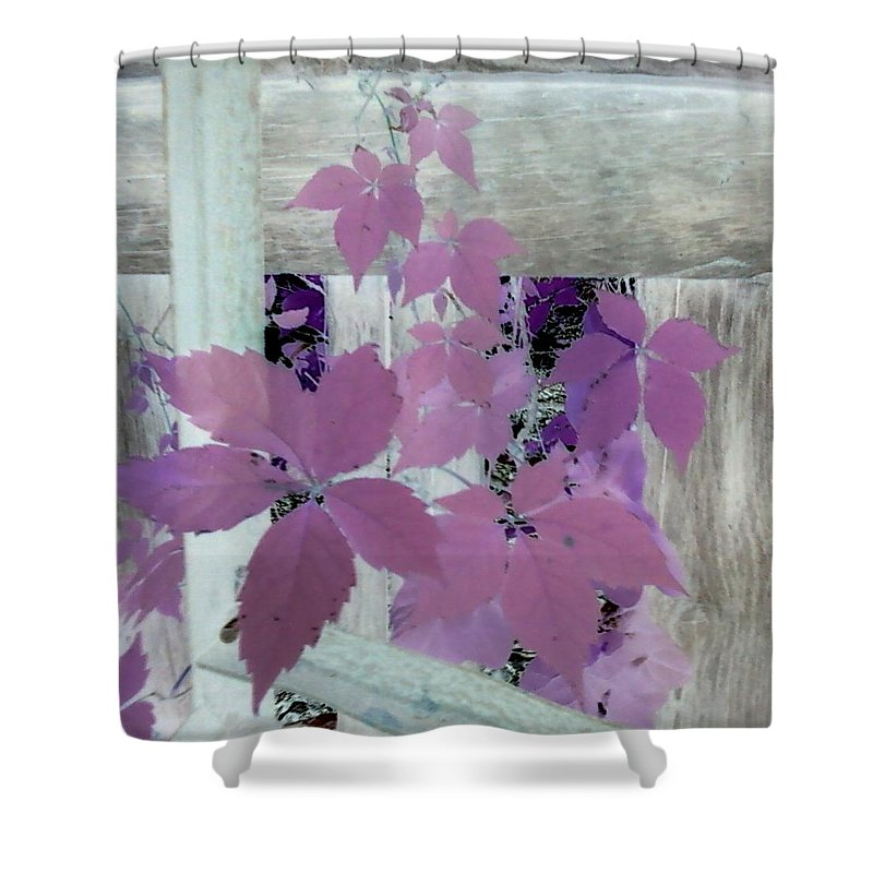 Barn Wood Plant Old Purple Shower Curtain featuring the photograph Plant In Negative by Cindy New