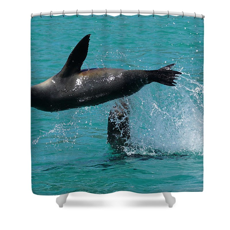 Shower Curtain featuring the photograph Playing Again by Diego Paredes