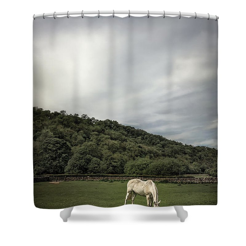 Natural Area Shower Curtains