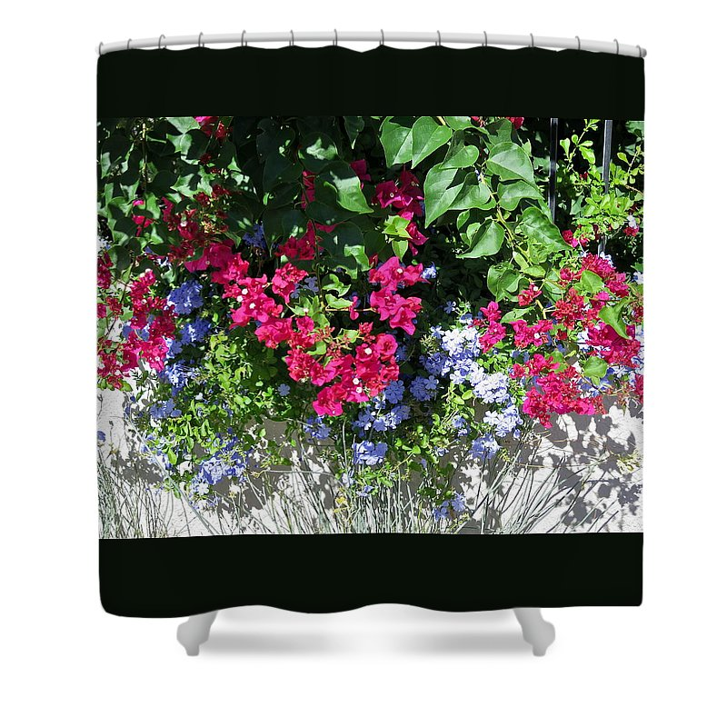 Botanical Shower Curtain featuring the photograph Plenty by Bonnie See