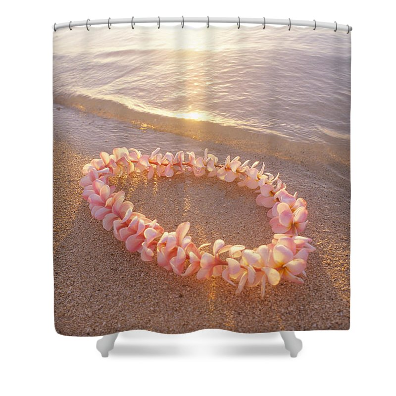 Afternoon Shower Curtain featuring the photograph Plumeria Lei Shoreline by Mary Van de Ven - Printscapes
