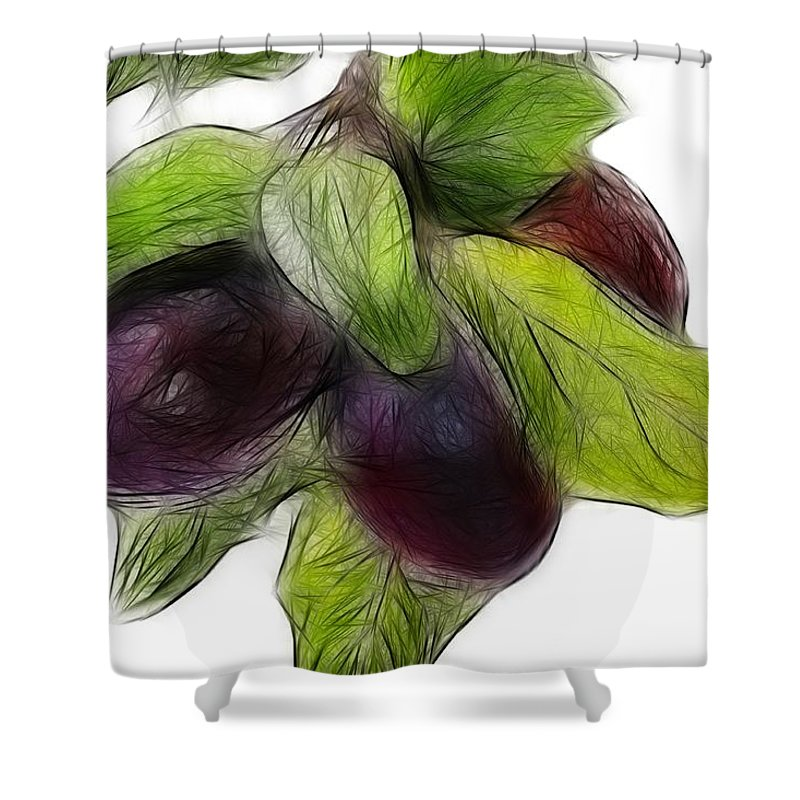 Plums Shower Curtain featuring the photograph Plums by Manfred Lutzius