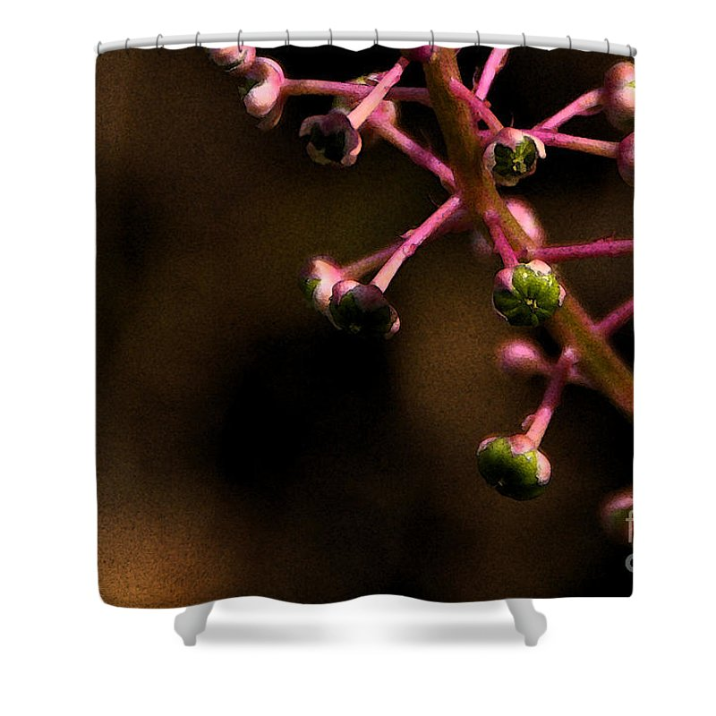 Pokeweed Shower Curtain featuring the photograph Pokeweed Emerges - Wc by Linda Shafer