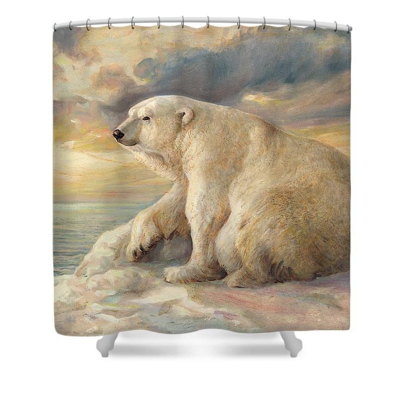 Polar Bear Shower Curtain featuring the painting Polar Bear Rests On The Ice - Arctic Alaska by Svitozar Nenyuk