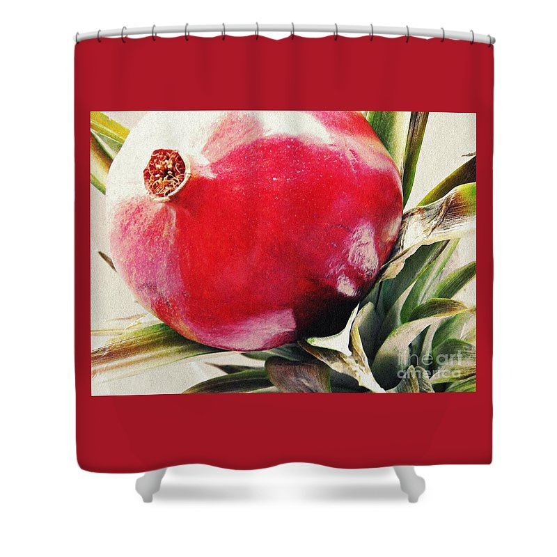 Fruit Shower Curtain featuring the photograph Pomegranate On A Pineapple Stalk by Sarah Loft