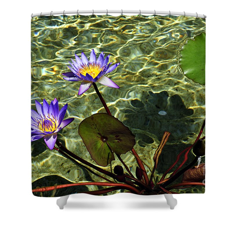 Clay Shower Curtain featuring the photograph Pond Florals by Clayton Bruster