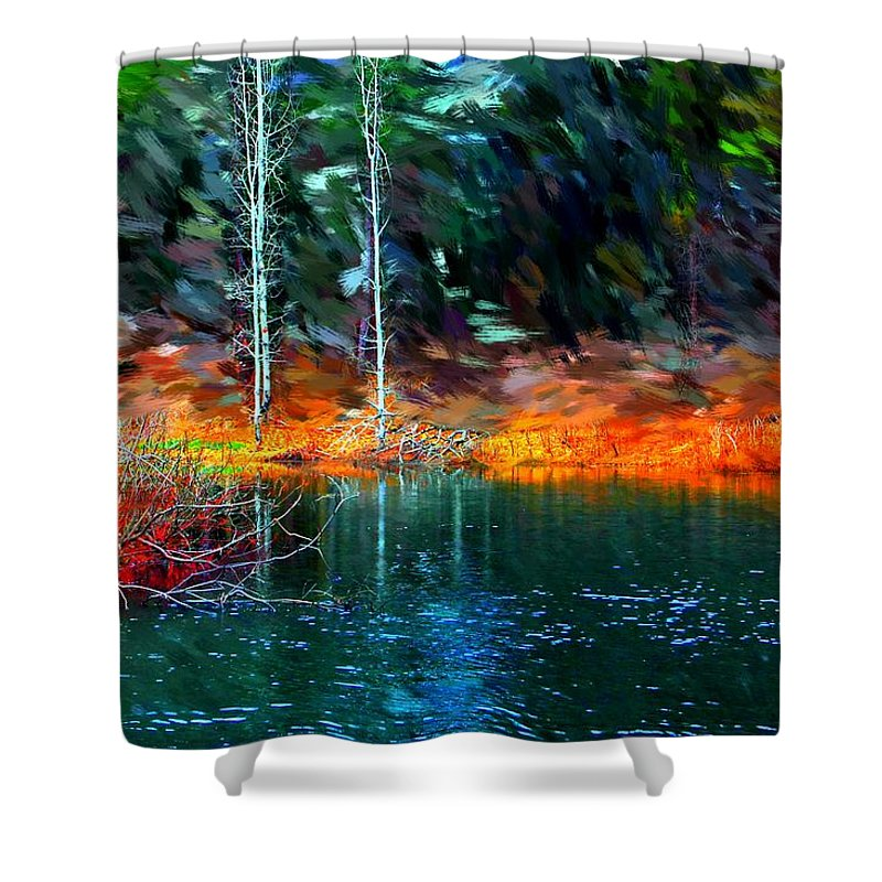 Digital Photograph Shower Curtain featuring the photograph Pond In The Woods by David Lane