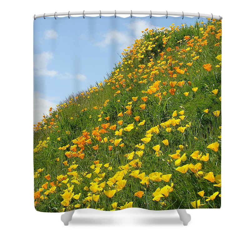�poppies Artwork� Shower Curtain featuring the photograph Poppies Hillside Meadow 17 Blue Sky White Clouds Giclee Art Prints Baslee Troutman by Baslee Troutman