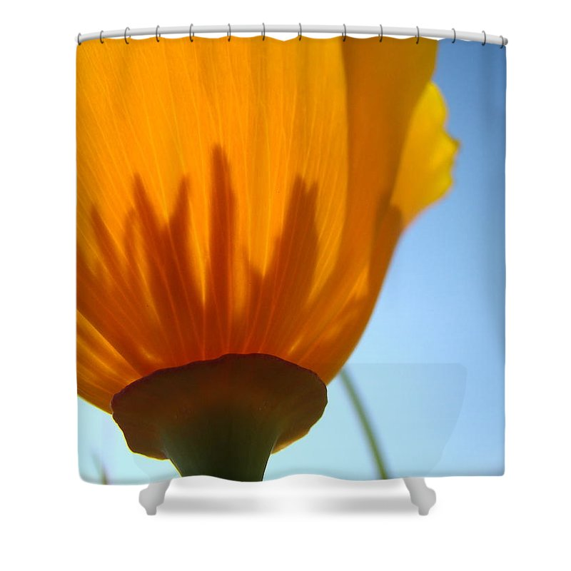�poppies Artwork� Shower Curtain featuring the photograph Poppies Sunlit Poppy Flower 1 Wildflower Art Prints by Baslee Troutman