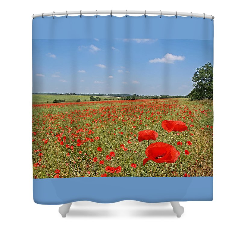 Poppy Field Shower Curtain featuring the photograph Poppy Fields 1 by Gill Billington