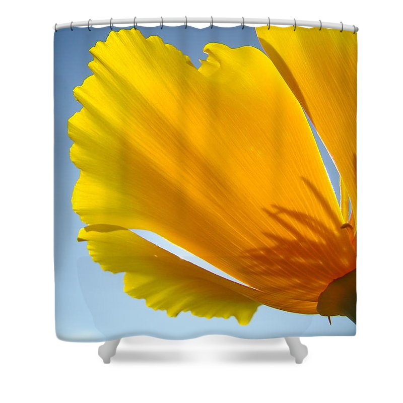 �poppies Artwork� Shower Curtain featuring the photograph Poppy Flower Art Print Poppies 13 Botanical Floral Art Blue Sky by Baslee Troutman
