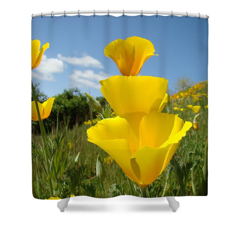 �poppies Artwork� Shower Curtain featuring the photograph Poppy Flower Meadow 7 Poppies Blue Sky Artwork Baslee Troutman by Baslee Troutman