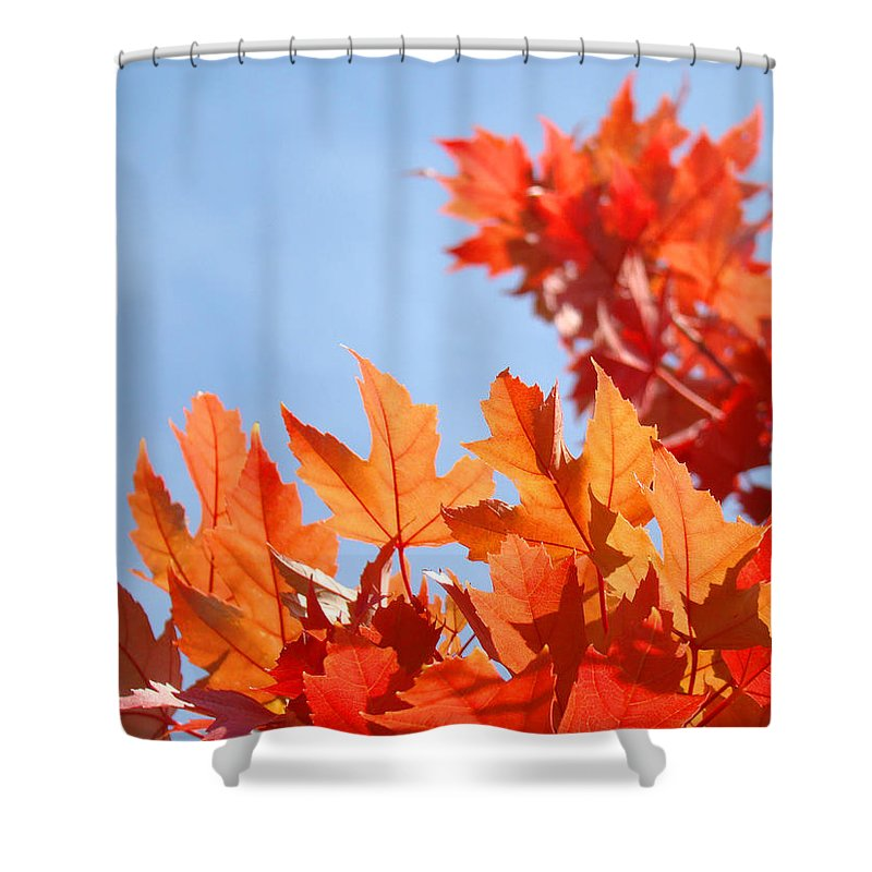 Autumn Shower Curtain featuring the photograph Popular Autumn Art Red Orange Fall Tree Nature Baslee Troutman by Baslee Troutman