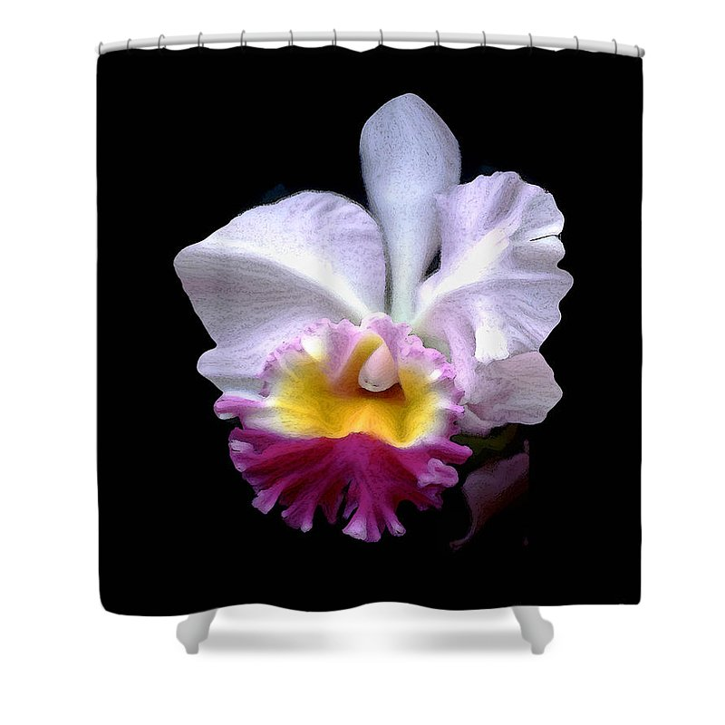 Abstract Shower Curtain featuring the photograph Portrait Of An Orchid by Linda Parker