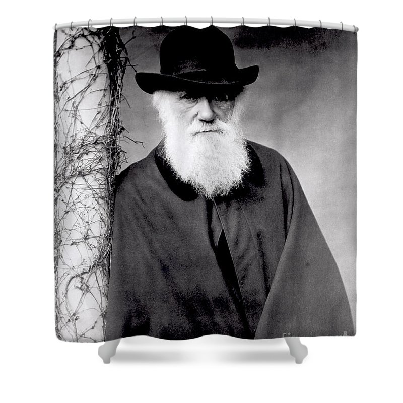 Portrait Of Charles Darwin (1809-82) 1881 (b/w Photo) By Julia Margaret Cameron (1815-79) Shower Curtain featuring the photograph Portrait Of Charles Darwin by Julia Margaret Cameron