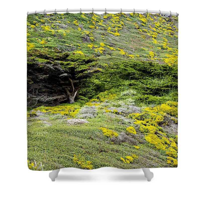 Landscape Shower Curtain featuring the photograph pr 162 - Mountain Greenery by Chris Berry