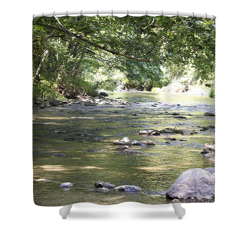 Landscape Shower Curtain featuring the photograph pr 164 - Mountain River by Chris Berry