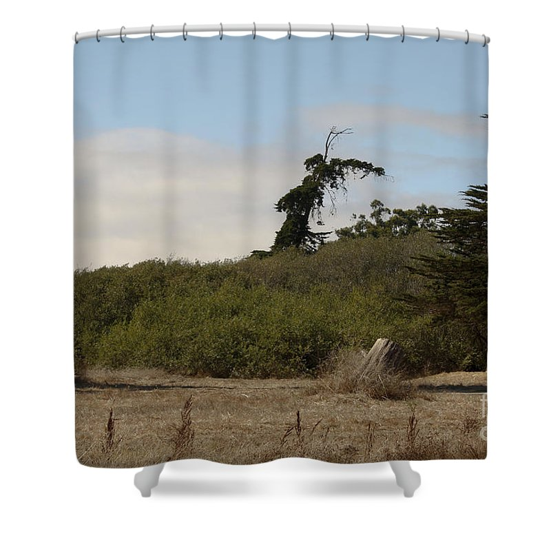 Landscape Shower Curtain featuring the photograph pr 180 - The Leaning Tree by Chris Berry
