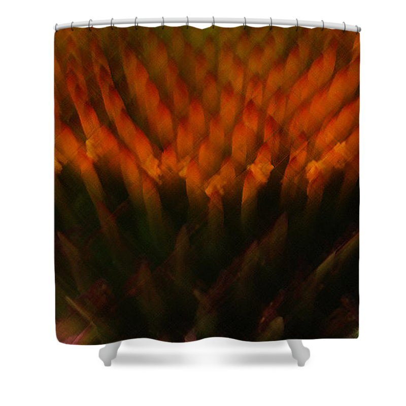 Coneflower Shower Curtain featuring the photograph Prairie Splendor by Linda Shafer
