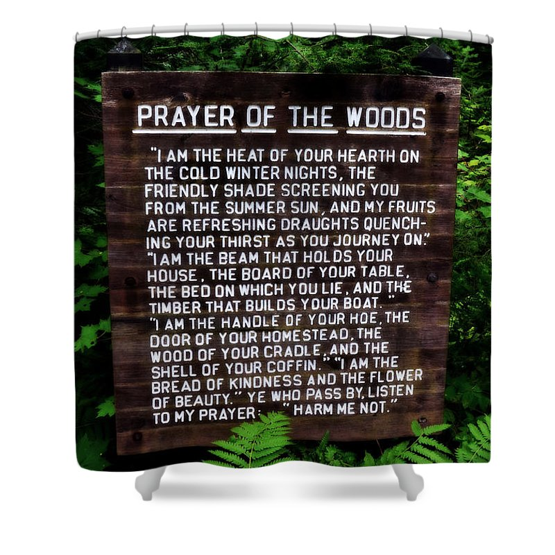 Prayer Shower Curtain featuring the photograph Prayer Of The Woods by Michelle Calkins
