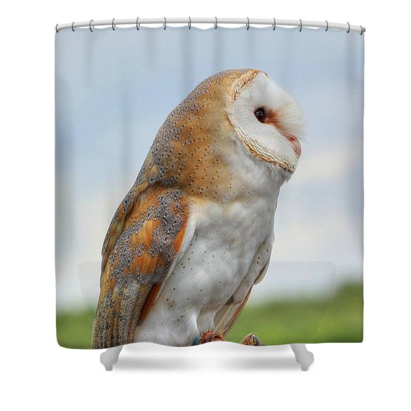 Barn Shower Curtain featuring the photograph Preparing For Flight by Vicki Spindler