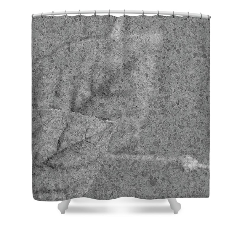 Leaves Shower Curtain featuring the photograph Preserved In Stone by Elliot Stombaugh