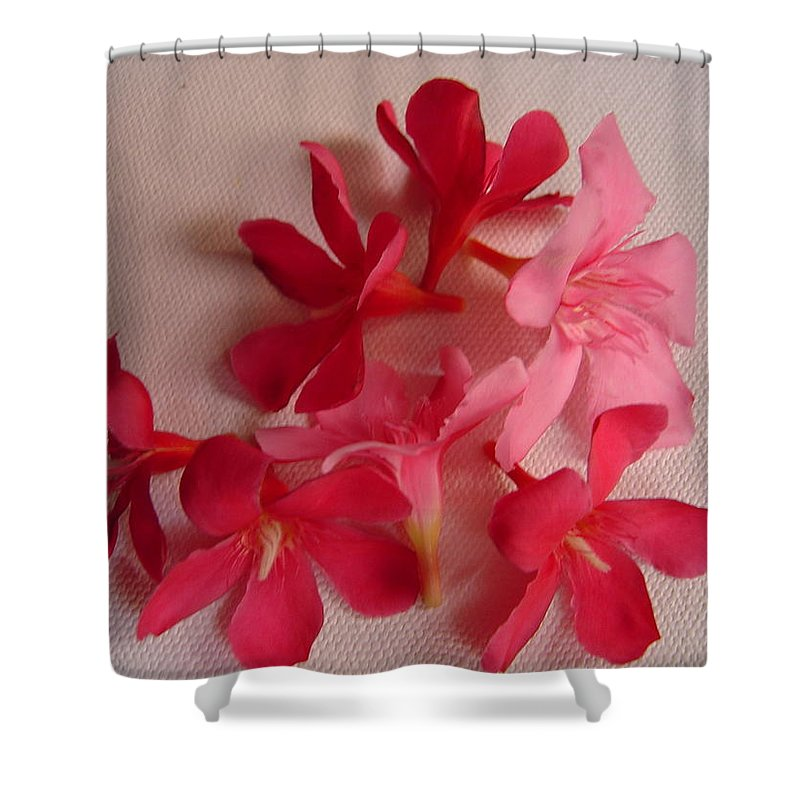 Foliage Shower Curtain featuring the photograph Pretty Flowers by Usha Shantharam