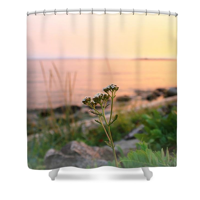 Landscape Shower Curtain featuring the photograph Pretty In Pink by Margre Flikweert